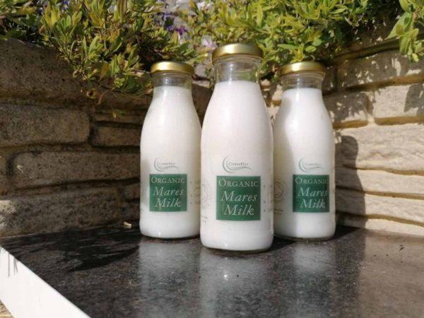Organic Mares Milk