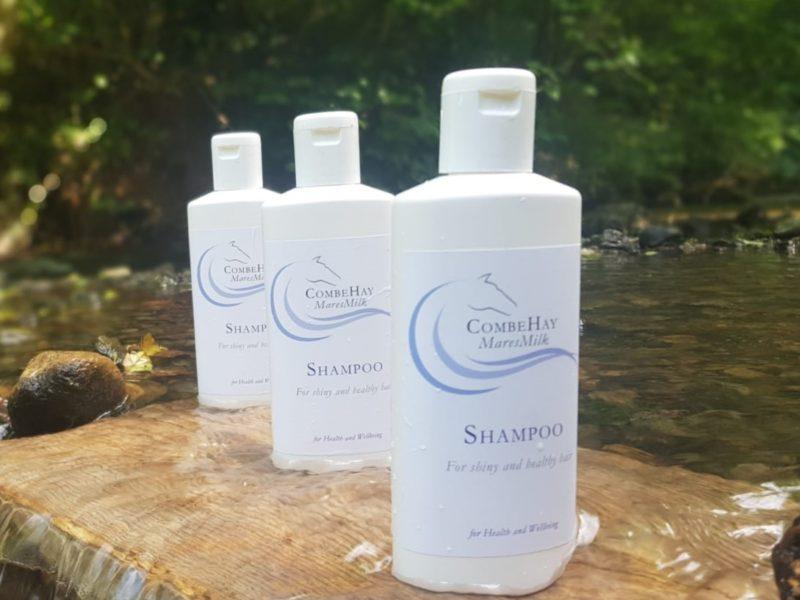 shampoo 13 (2)
